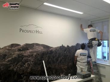 Custom Wallpaper Printing and Installation
