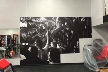 Wall Murals 3