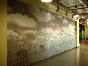Wall Murals 1
