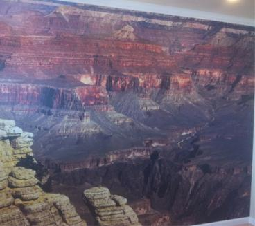 wall-murals-21