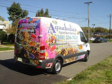Vehicle Wraps 3