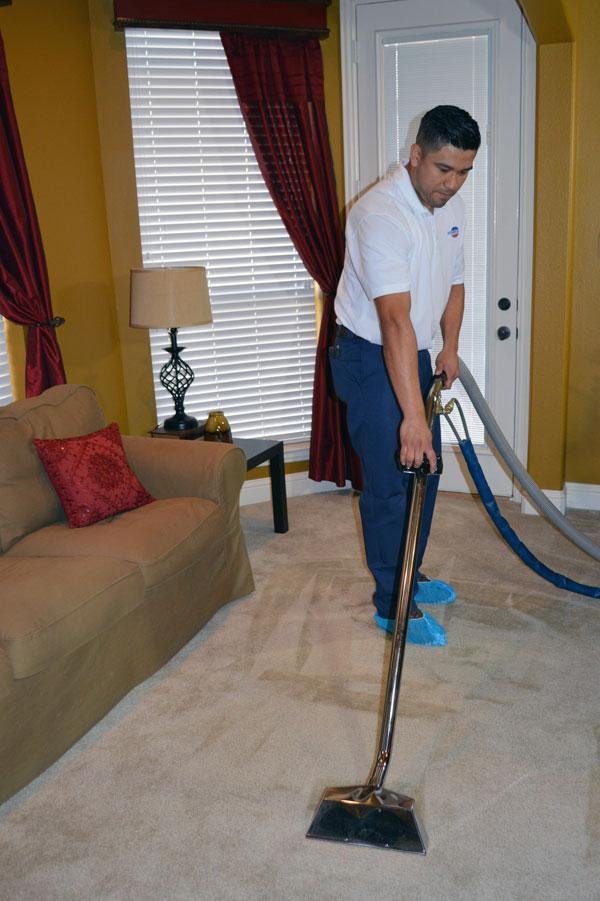 Carpet and Area Rug Cleaning in your home