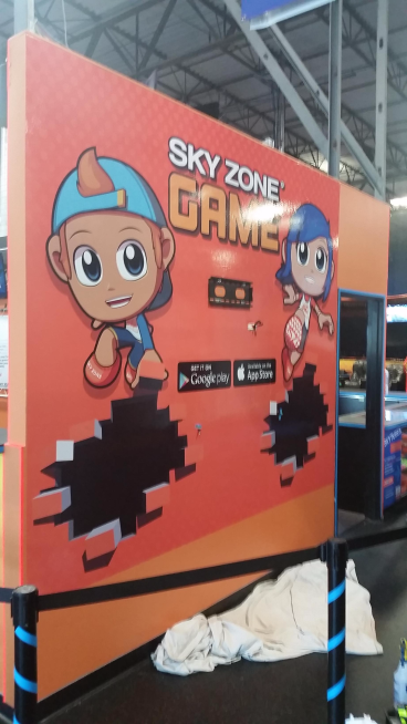 Wall Mural For Sky Zone
