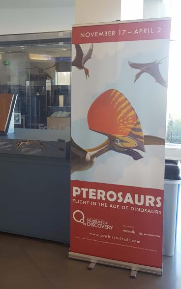 Fort Collins Museum of Discovery, Ptersaurs exibit banner stand
