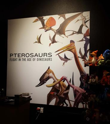 Fort Collins Museum of Discovery, Pterosaurs Rigid Wall Mural