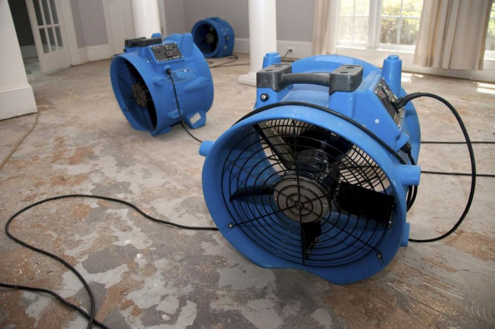 Water damage air mover