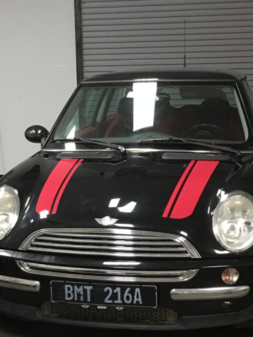 Mini Cooper Stripes, SpeedPro Greenville