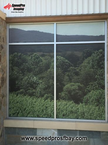 Part of a street facing landscape mural on glass