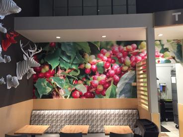Thomas Hammer Coffee wall mural