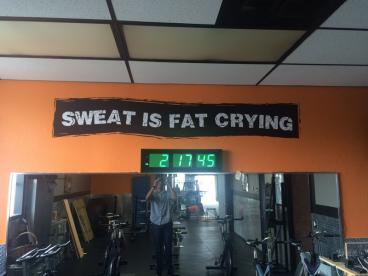 Evolve Gym Decal