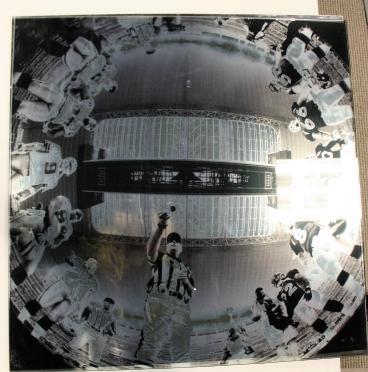 Dallas Cowboys Window Vinyl Speedpro Irving Dallas Texas