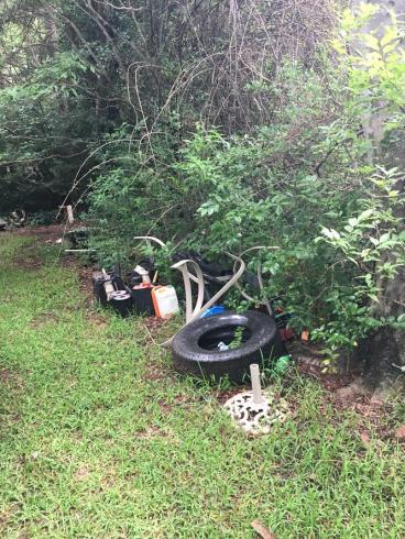 Remove Mosquito Breeding Areas From Your Yard !
