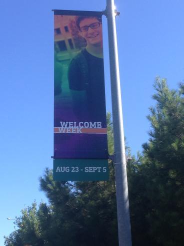 Street Banners for UTD