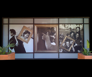 Environmental Graphics: Window Vinyl installed in Dallas, Houston, Fort Worth and Plano