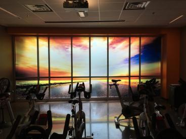 Clear Vinyl Window Graphics for The Wellness Center in Johnson City
