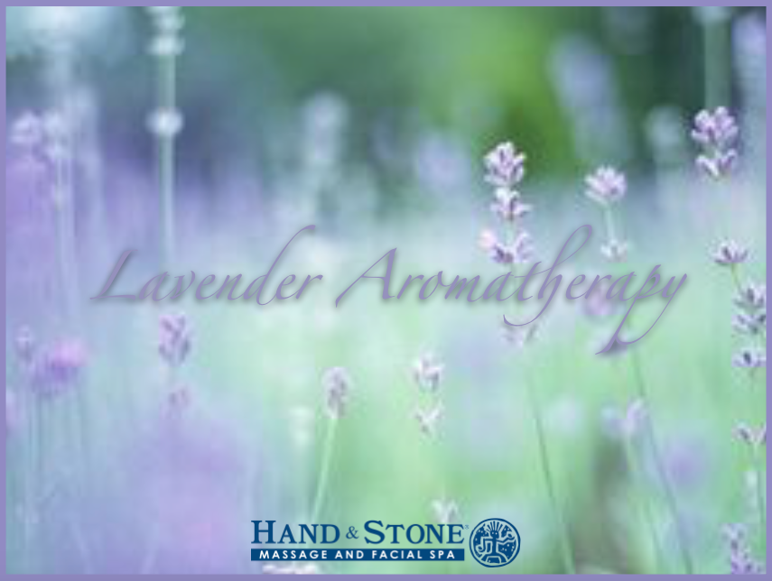 Lavender Aromatherapy at Hand & Stone Massage and Facial Spa