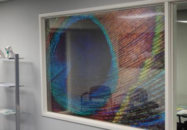 window-graphics-07