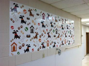Wall Murals 15