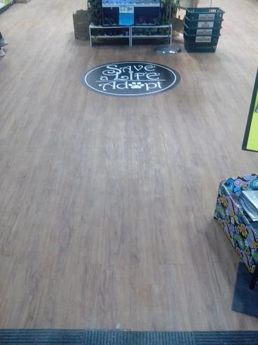 Floor Decal