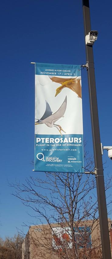 Fort Collins Museum of Discovery, Pterosaurs Exhibit Light Pole Banners