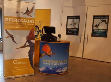 Fort Collins Museum of Discovery, Pterosaurs Exhibit Banner Stand and Kiosk Wrap