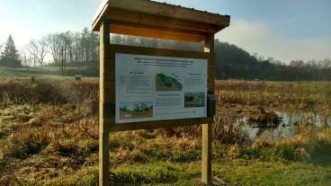 KCSD Wetland Project