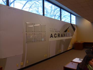 Acranet Complete wall mural