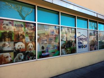 Under 1 Woof window graphics Alameda