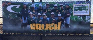 Design and Print: Baseball Banner