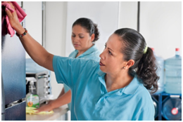cleaning services mountain view