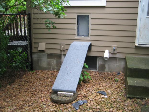Hale pet door with ramp in Edina