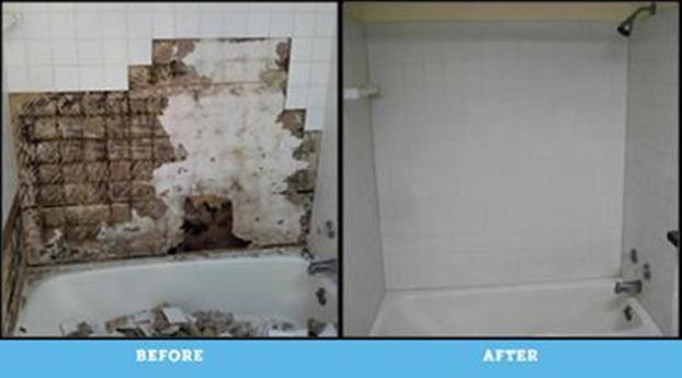 Resolved major mold issue in Edina