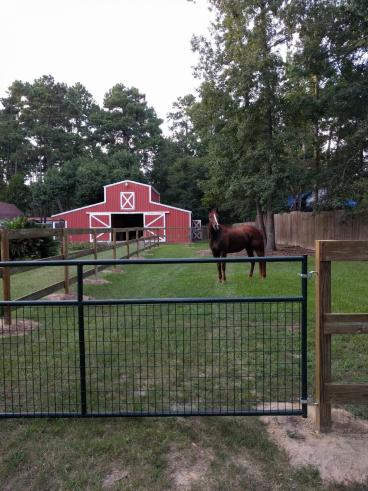 Install Horse Fence - Conroe, TX