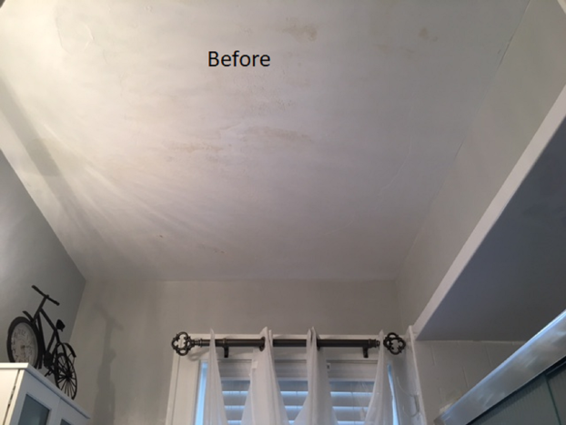 Before Photo of Damaged Ceiling in Mt. Lebanon, PA #5