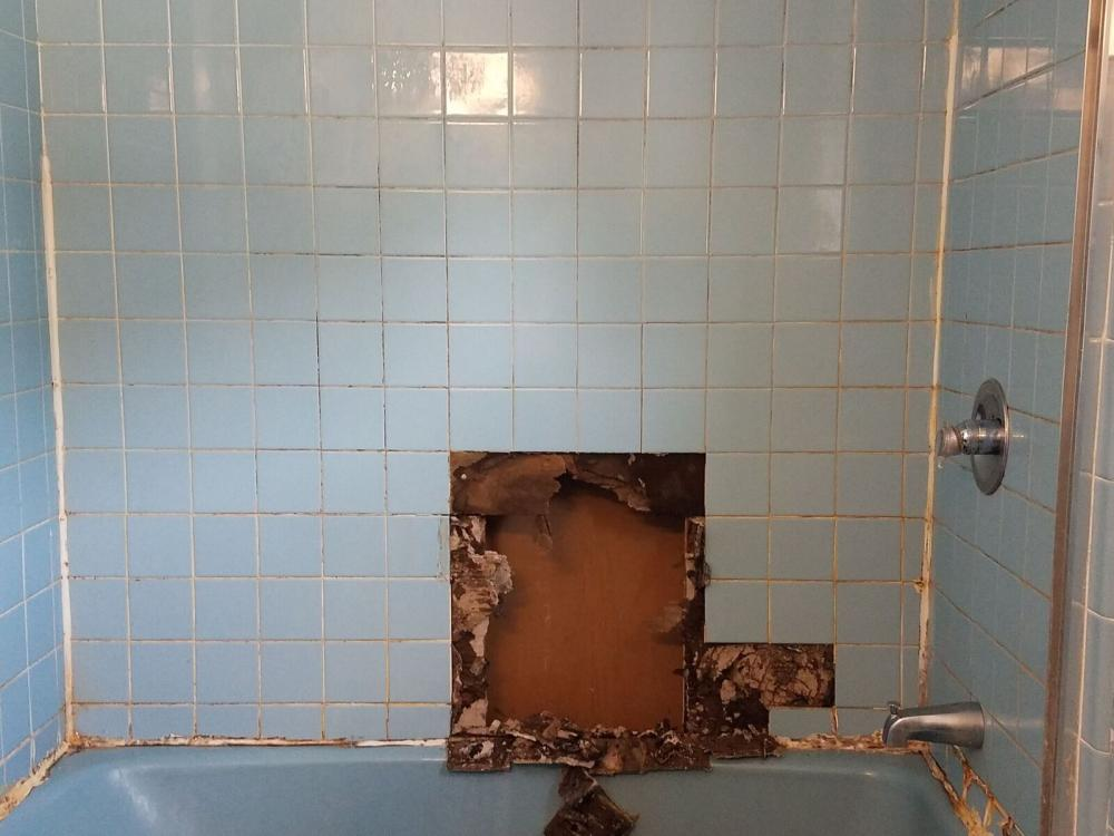 Before a Bathroom Renovation