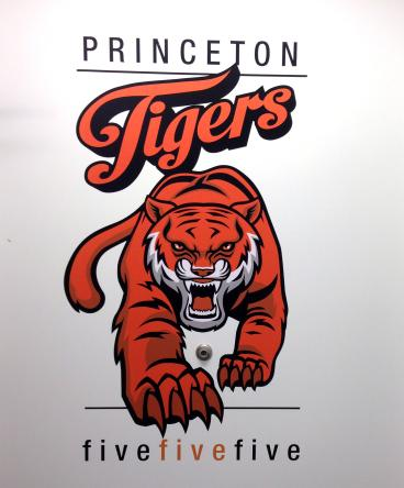 Princeton University Tigers New Jersey Wall Decal