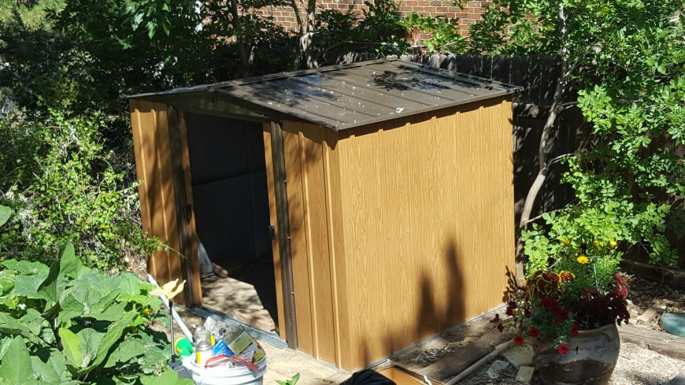 Shed Replacement 06