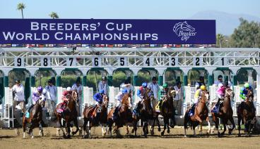Breeders' Cup Starting Gate