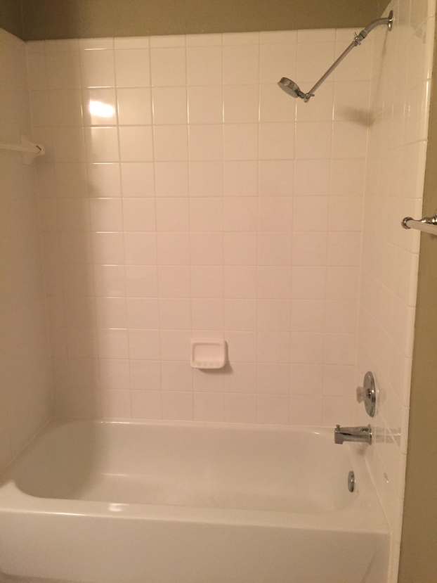 Shower Remodel before photo