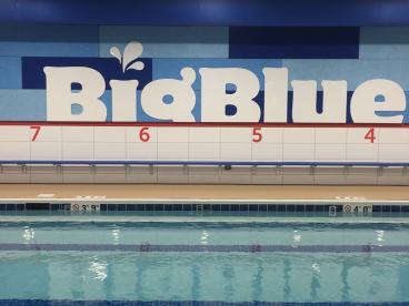 Wall Mural - Big Blue Swim School - Niles, IL