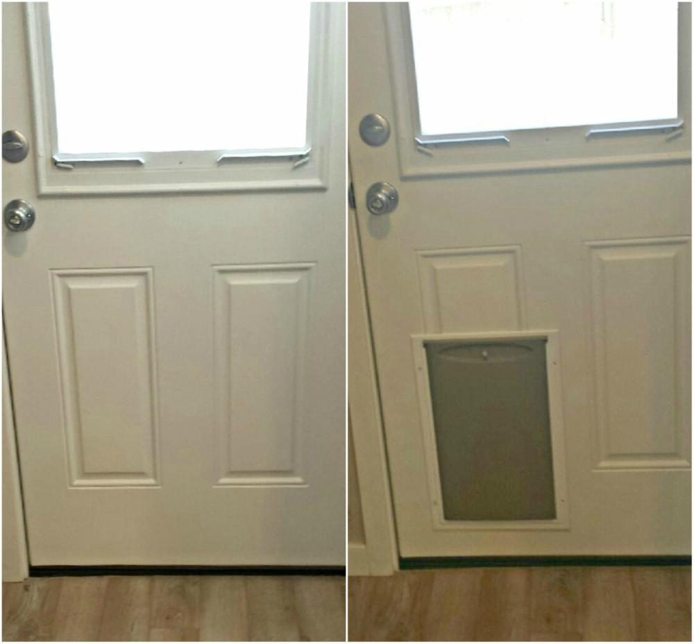 Doggie Door Installation in Franktown CO 80116