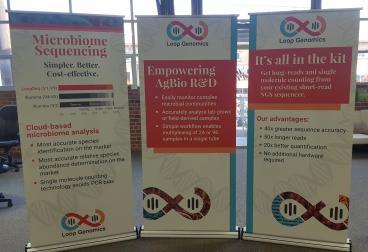 Loop Genomics Banner Stands