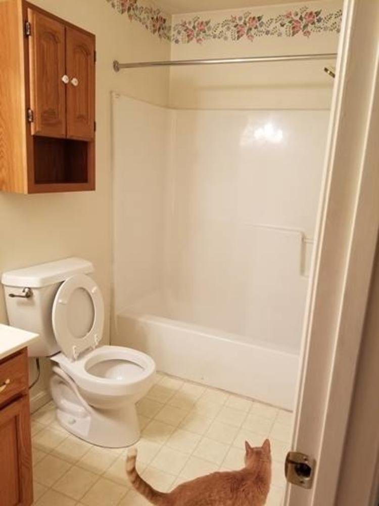 Sykesville Bathroom Remodel- Before