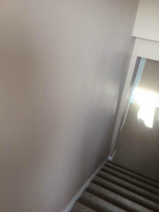 Drywall Repair and Paint