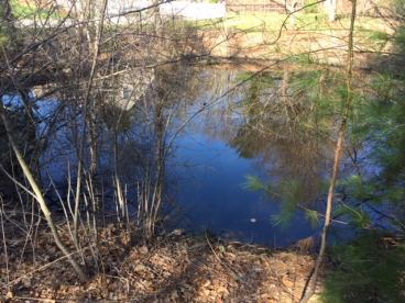 Active Breeding Ground, East Bridgewater, MA