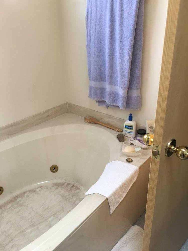 Before remodel of tub with outdated materials.