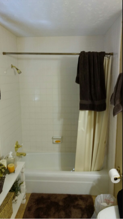 Tub/Shower converted to walk in shower in Dothan, Al