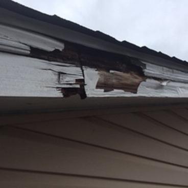 Fascia Repair ~ Eldersburg, MD