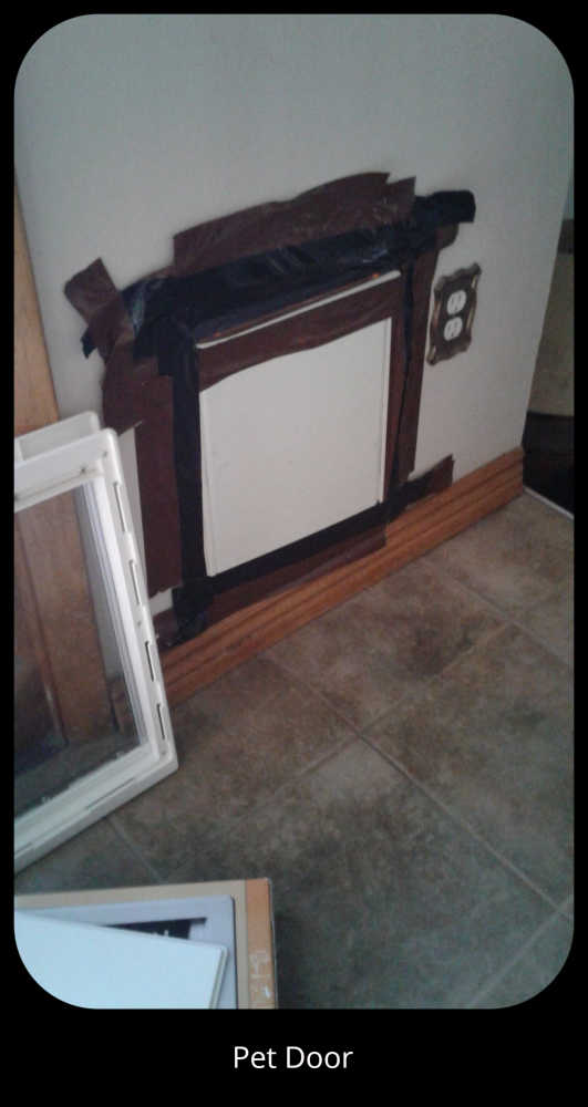 Pet Door Installation in Thornton CO