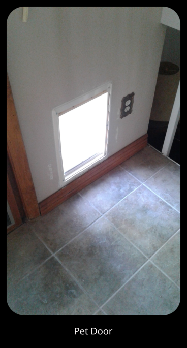 Pet Door Installation in Thornton, CO